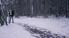 Equipe o inverno de passeio Forest Traveler With Backpack da neve na noite ou na manhã, no crepúsculo vídeos de arquivo