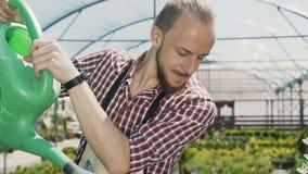 Equipe o jardineiro em plantas molhando e em flores do avental verde com o pulverizador do jardim na estufa Gotas da água no filme
