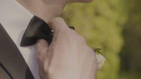 Equipe o noivo em um traje formal do casamento com borboleta Terno, mãos, cuidado, laço, para corrigir, para ajustar, para formar filme