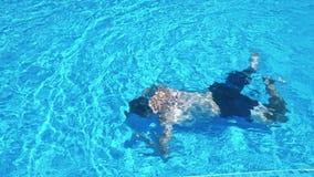 Equipe o passeio na piscina no dia ensolarado filme