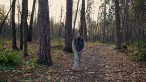 Equipe o passeio no parque do outono, ar de respiração, escutando os pássaros que cantam vídeos de arquivo