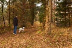 Equipe o passeio o cão na floresta na queda Fotos de Stock Royalty Free