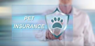 Equipe o toque de um conceito do seguro do animal de estimação em um tela táctil Fotos de Stock Royalty Free