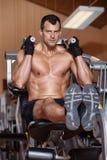 Equipe o trabalho na máquina da aptidão - músculo abdominal Fotografia de Stock Royalty Free
