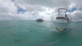 Equipe o turista que relaxa na plataforma dianteira da navigação do iate no oceano filme