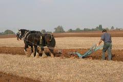 Equipe Ploughing Imagens de Stock
