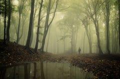 Equipe a posição em uma floresta verde com névoa e árvores Fotografia de Stock