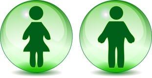 Equipe sinais do toalete da mulher no globo do vidro verde Fotografia de Stock Royalty Free