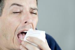 Equipe Sneezing no tecido Imagem de Stock