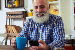 Equipe usando o smartphone e guardando um copo do chá em casa imagem de stock royalty free