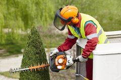Equiped worker pruning a tree on a crane. Gardening. Works Stock Photography