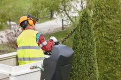 Equiped worker pruning a tree on a crane. Gardening. Works Stock Image