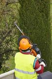 Equiped worker pruning a tree on a crane. Gardening. Works Royalty Free Stock Images