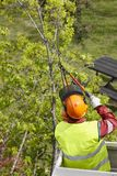 Equiped worker pruning a tree on a crane. Gardening. Works Royalty Free Stock Image