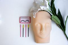 equipment of eyelash extension , basic training eyelash extensiong stock image