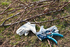 Equipment For Pruning Royalty Free Stock Photos