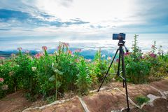 Equipment, phone - Optical Instrument, Sunset, Thailand, Aspirations. Modern professional Phone on a tripod in nature stock images