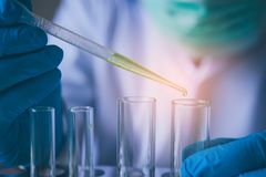 Equipment and science experiments oil pouring scientist with test tube green making research in laboratory. royalty free stock image