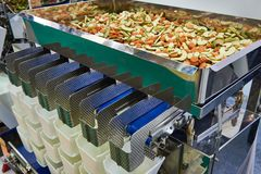 Equipment for sorting and packaging of food products. In the factory royalty free stock images