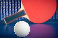 Equipment for table tennis Stock Photography