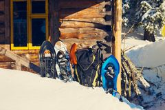 Equipment for winter travel stands in the snow. On the background of old shelter among huge pine trees covered with snow on sunny day Stock Photo