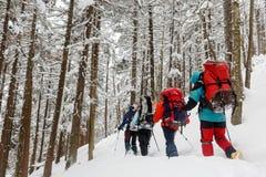 Equipo de caminantes en montañas del invierno Imagenes de archivo