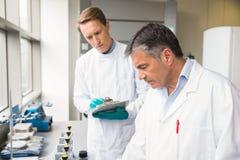 Equipo de científicos que trabajan junto Fotografía de archivo libre de regalías