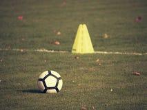 Equipo de entrenamiento en el campo verde del estadio fotos de archivo