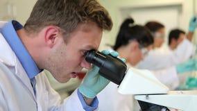 Equipo de estudiantes de la ciencia que trabajan en el laboratorio metrajes