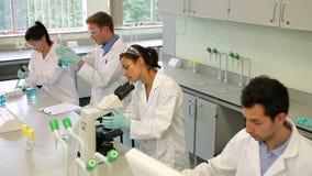 Equipo de estudiantes enfocados de la ciencia que trabajan junto en el laboratorio almacen de video
