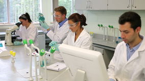 Equipo de estudiantes jovenes enfocados de la ciencia que trabajan junto en el laboratorio almacen de video
