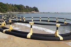 Equipo de goma de la natación de la playa Imagen de archivo libre de regalías