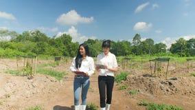 Equipo de granjero Walking en un campo y el hablar en la inspección de la calidad metrajes