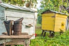 Equipo de la apicultura - fumador de la abeja, proceso de obtener la miel, poseer seguridad Imagen de archivo libre de regalías