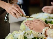 Equipo de la ceremonia, ceremonia del compromiso en Tailandia Fotos de archivo libres de regalías