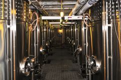 Equipo de la elaboración de vino Fotografía de archivo
