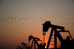 Equipo de la industria de petróleo para el petróleo en el fondo de la puesta del sol Imágenes de archivo libres de regalías