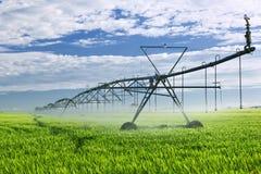 Equipo de la irrigación en campo de granja Fotos de archivo