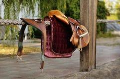 Equipo del montar a caballo de Brown Imagenes de archivo