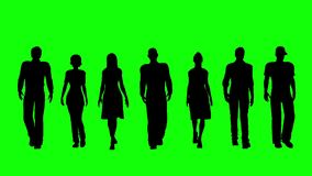 Equipo del negocio en el Screeen verde metrajes