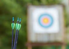 Equipo del tiro al arco - flechas Fotografía de archivo