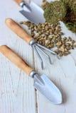 - Equipo para la casa que cultiva un huerto - pequeños instrumentos que cultivan un huerto caseros Fotos de archivo libres de regalías