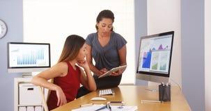 Equipo profesional de empresarias de la raza mixta que trabajan en oficina Imagenes de archivo