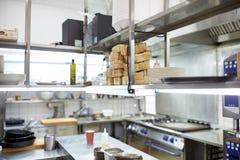 Equipo profesional de la cocina del restaurante Imágenes de archivo libres de regalías
