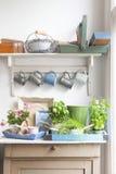 Equipo que cultiva un huerto en el aparador con las tazas que cuelgan en cocina Fotografía de archivo
