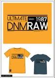 Equipo universitario 018 de la camiseta Imagen de archivo