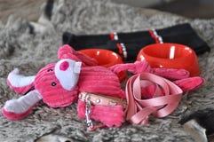 Equipo y juguetes para un perrito Fotos de archivo libres de regalías