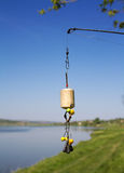 Equipped with a bait for carp, tehnoplankton Stock Images