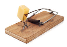 Equipped with cheese mousetrap Royalty Free Stock Photography
