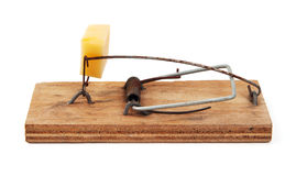Equipped with cheese mousetrap Stock Images